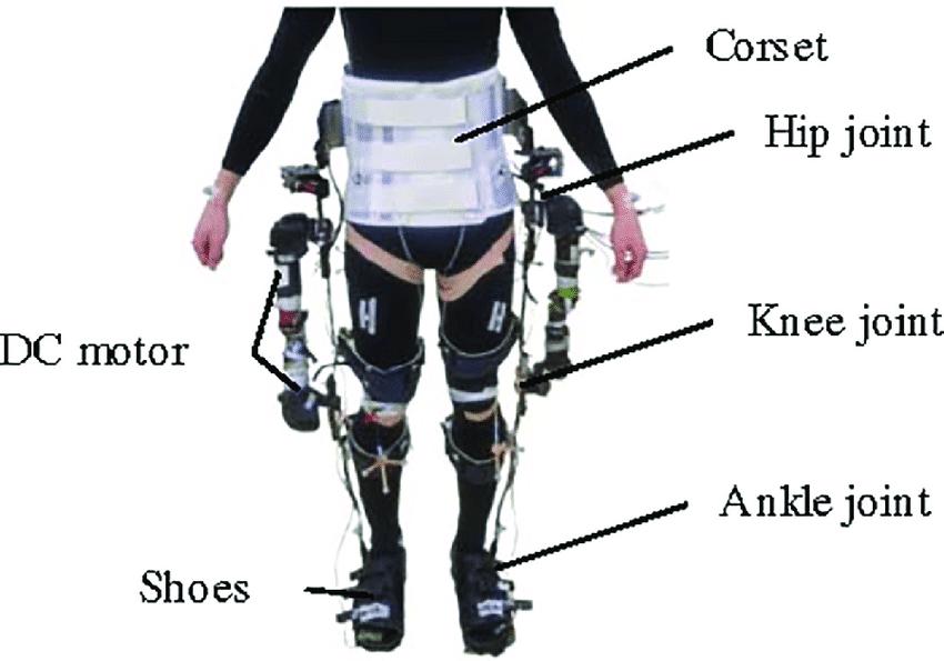 Lower Limb Orthoses